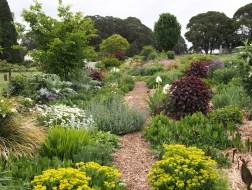 Hillandale Garden and Nursery, Central West NSW