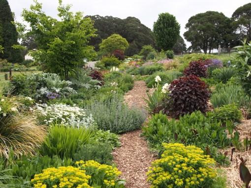 Hillandale garden, Yetholme, NSW