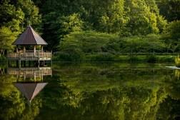 USA, Virginia - Meadowlark Botanical Gardens