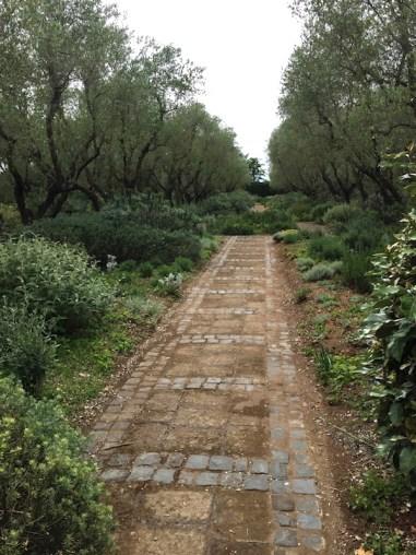 Villa La Landriana. Photo Anne Latreille