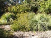 The nearby Taft garden at Ojai