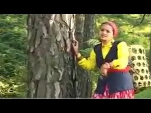 Ku Chhe Ghasyeri Jhamm (कू छे घस्येरी झम) – Garhwali Video Song