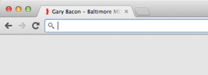 Awesome Bar, Search