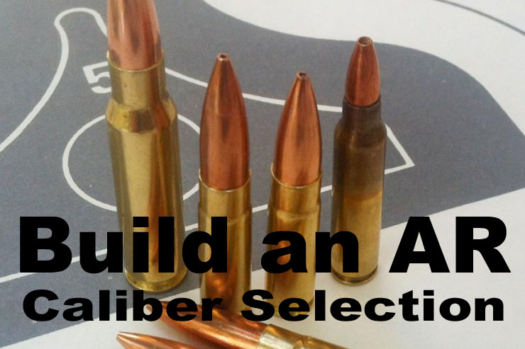 Build an AR-15 AR Calibers - GunsAmerica Digest