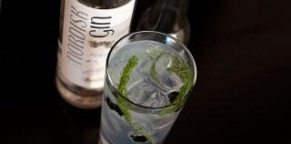 #tuesdayGT X: Ny nordisk Gin & Tonic på skovtur