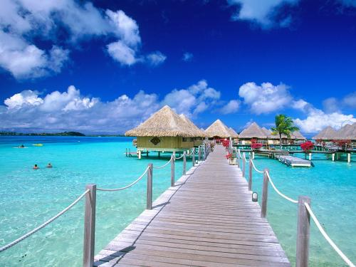Bora Bora Vacation Picture