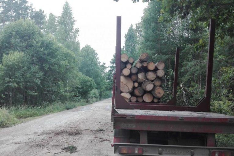 Калужские активисты ОНФ отметили причинение урона дорогам от деятельности лесозаготовителей