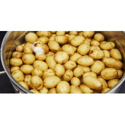 Small Crop Of How Long Do You Boil Potatoes