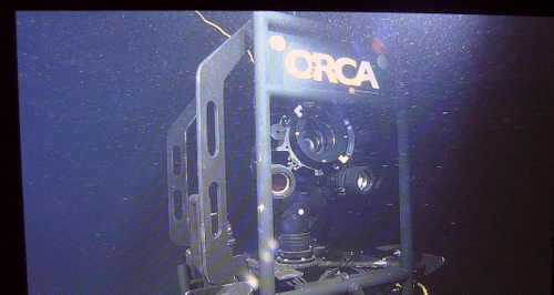 Eye Of The Sea - Deepsea Webcam