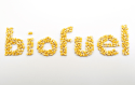 Petrobras To Double Biofuels Production With Eye On Global Shipments