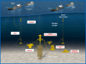 BP Joins Gulf of Mexico Marine Well Containment Company