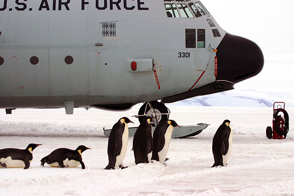 US Air Force C-130 antarctica