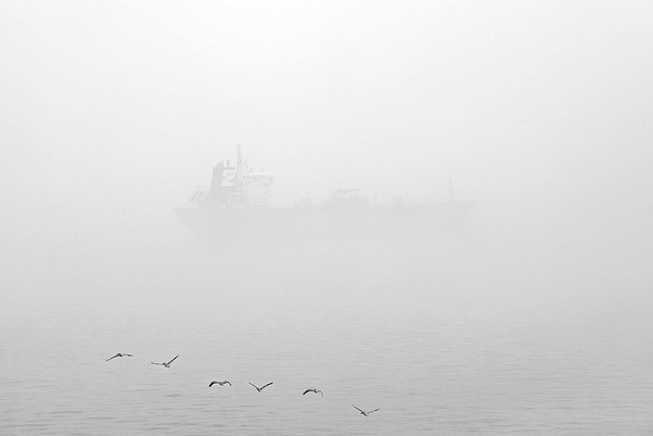 ship fog shipping lou vest oneeighteen