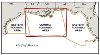 Lease Sale 216/222 focused on the central planning area of the U.S. Gulf of Mexico. Image: BOEM