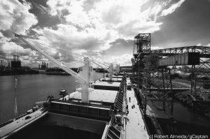 grain carrier bulk liberty maritime