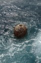 And In Other News…Floating Mine Found off Florida Beach, What?