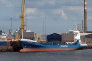 Ship Runs Aground After Chief Officer Blacks Out While Hitting the Head