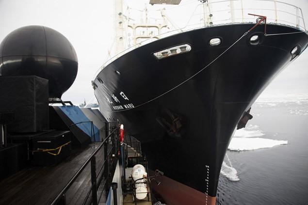 Japanese research vessel Nisshin Maru (R) collides with the Sea Shepherd ship Steve Irwin in Mackenzie Bay, Antarctica in this handout picture taken on February 20, 2013. Image credit: REUTERS/Tim Watters/Sea Shepherd Australia/Handout