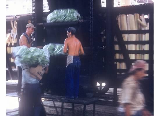 Fred Pickhardt sr loading bananas