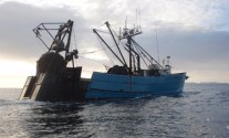 Trying Very Hard To Die: The Preventable Disease in Commercial Fishing