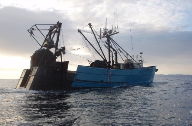 Fishing vessel offshore