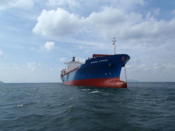 HAMMONIA AFRICUM, sister vessel to the Hammonia Thracium, image courtesy Hammonia Reederei