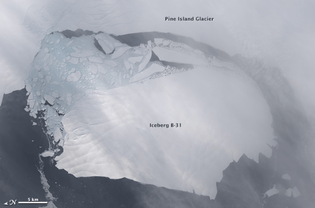 NASA satellite image shows the iceberg, known as B31, breaking off from the Pine Island Glacier in November 2013. Image courtesy NASA