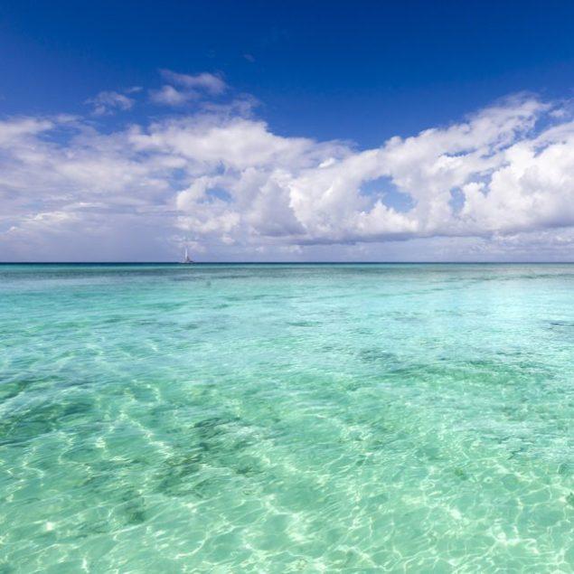 tropical waters ocean jamaica
