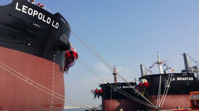 leopold ld capesize bulk carrier