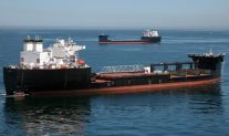 SPOTD: Dual MLPs off San Diego