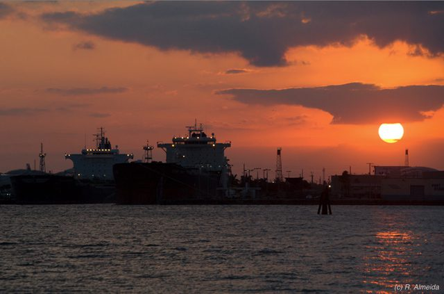 port everglades sunset ships