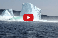 Watch: Wife Freaks Out After Iceberg Collapses