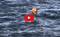 Disney Cruise Ship Rescues Royal Caribbean Passenger Who Fell Overboard [VIDEO]