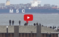 MSC Oscar – World's Biggest Containership Sails Into Wilhelmshaven [VIDEO]