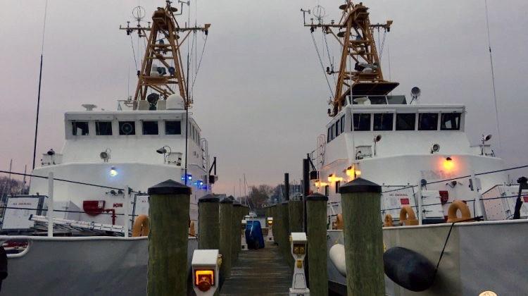 sea shepard ships Farley Mowat and Jules Verne