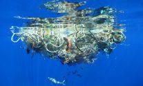 Biodegradable Plastics Don't Work At Sea – Says New UN Study