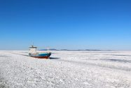 Arctic Thaw Opens Shipping Routes, Risks to Environment