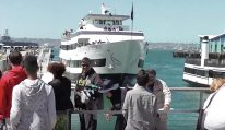 WATCH: San Diego Harbor Cruise Plows Into Pier Right in Front of Tourists