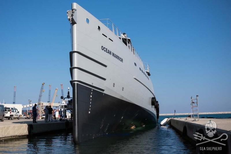 Sea Shepherd's new patrol vessel Ocean Warrior. Photo: Sea Shepherd Conservation Society