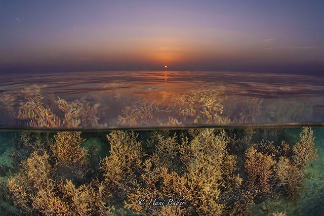aljazair-beach