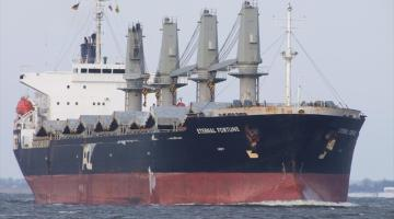 Salvage Underway After Crew Abandons Bulk Carrier Off Cape Town