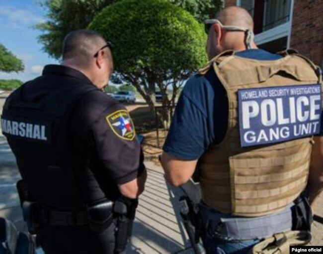 En la operación contra las pandillas participaron fuerzas locales, estatales y federales que luchan contra grupos criminales.