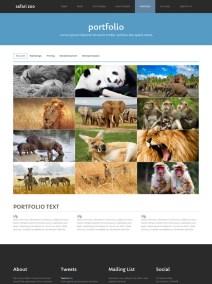 Safari Zoo-3