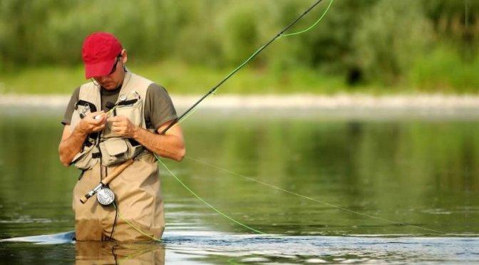 Pescar2