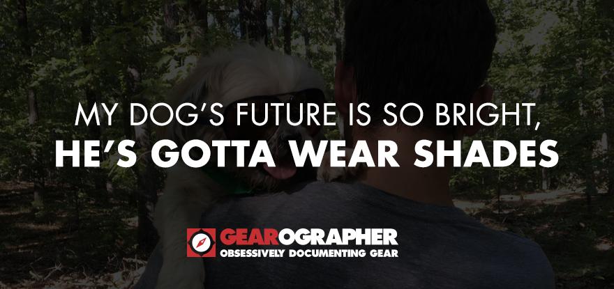GR_DogShades-Hero