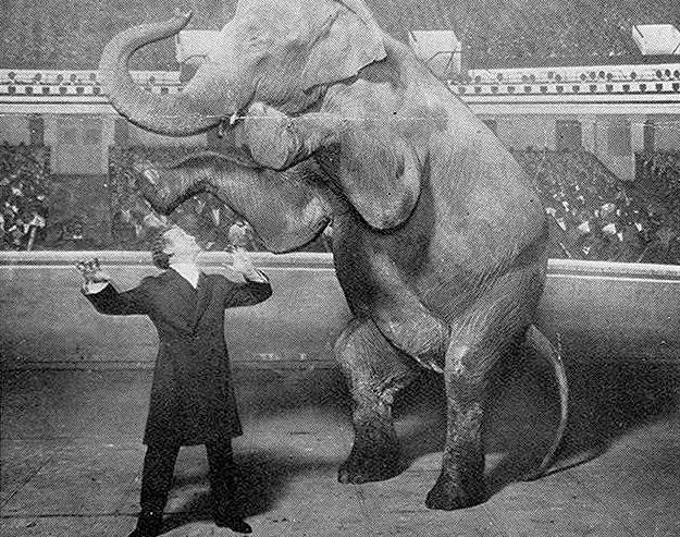Outrage Master Magician Harry Houdinis Secrets Revealed