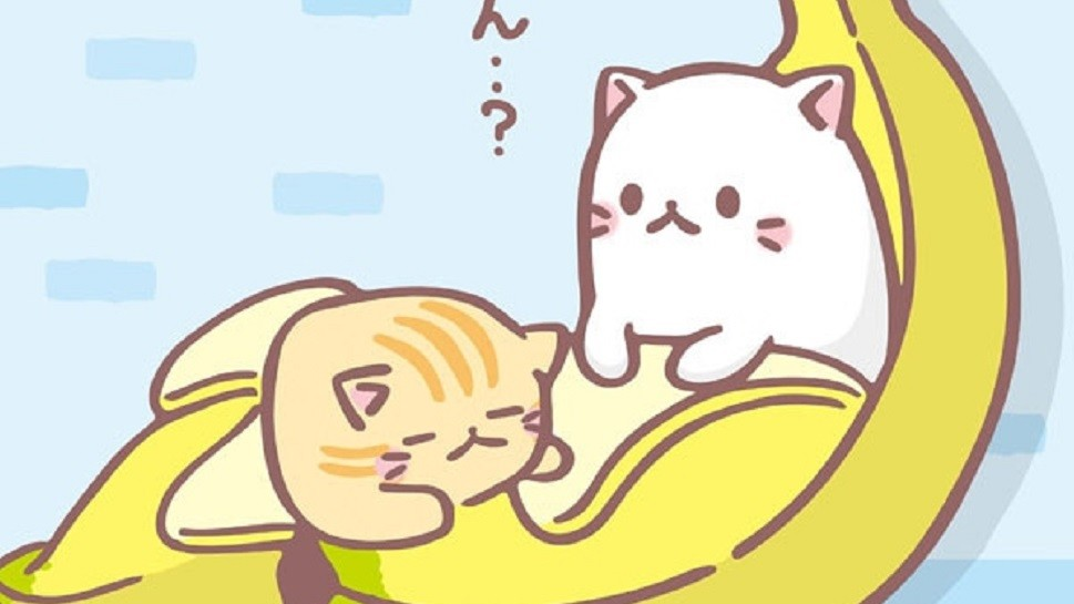 Cute Japanese Cat Wallpaper One Of The Biggest Animes Out Now Features A Cat In The