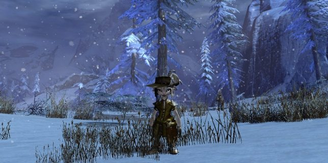 My Guild Wars ranger, currently decked out in some pretty awesome pirate gear. Screenshot: Jenny Williams