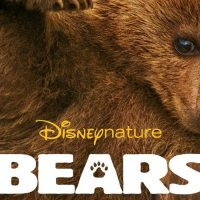 4 Things Parents Should Know About Disneynature's Bears