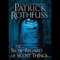 A Quick Look at The Slow Regard of Silent Things